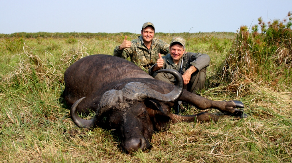 And down he was, one world class Cape Buffalo.