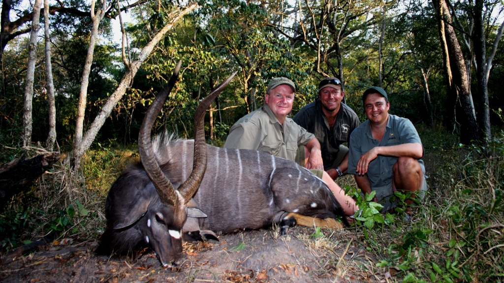 As the bull cleared Johnny squeezed off his 338, the bull lunged and took off at a rapid pace disappearing into the undergrowth. We tracked him for about 100 yards before finding him piled up with a well placed lung shot. A magnificent bull to say the least!
