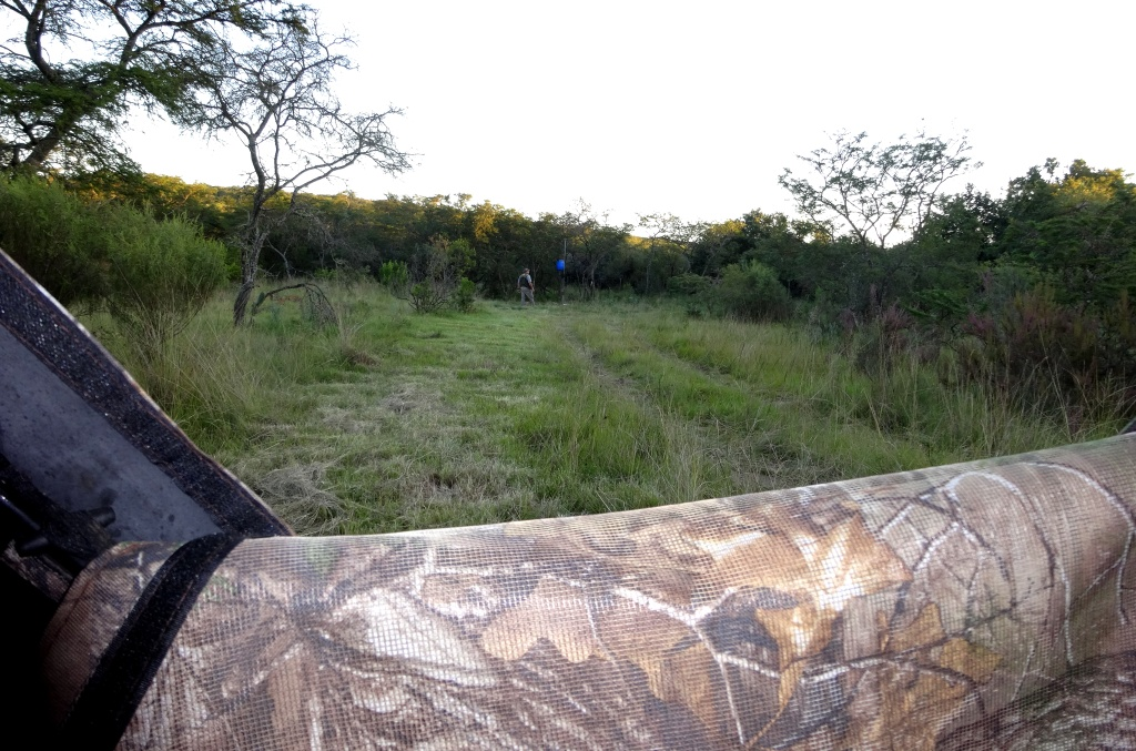 Past experience had told us, get into the blind early and wait - The guys did exactly that.