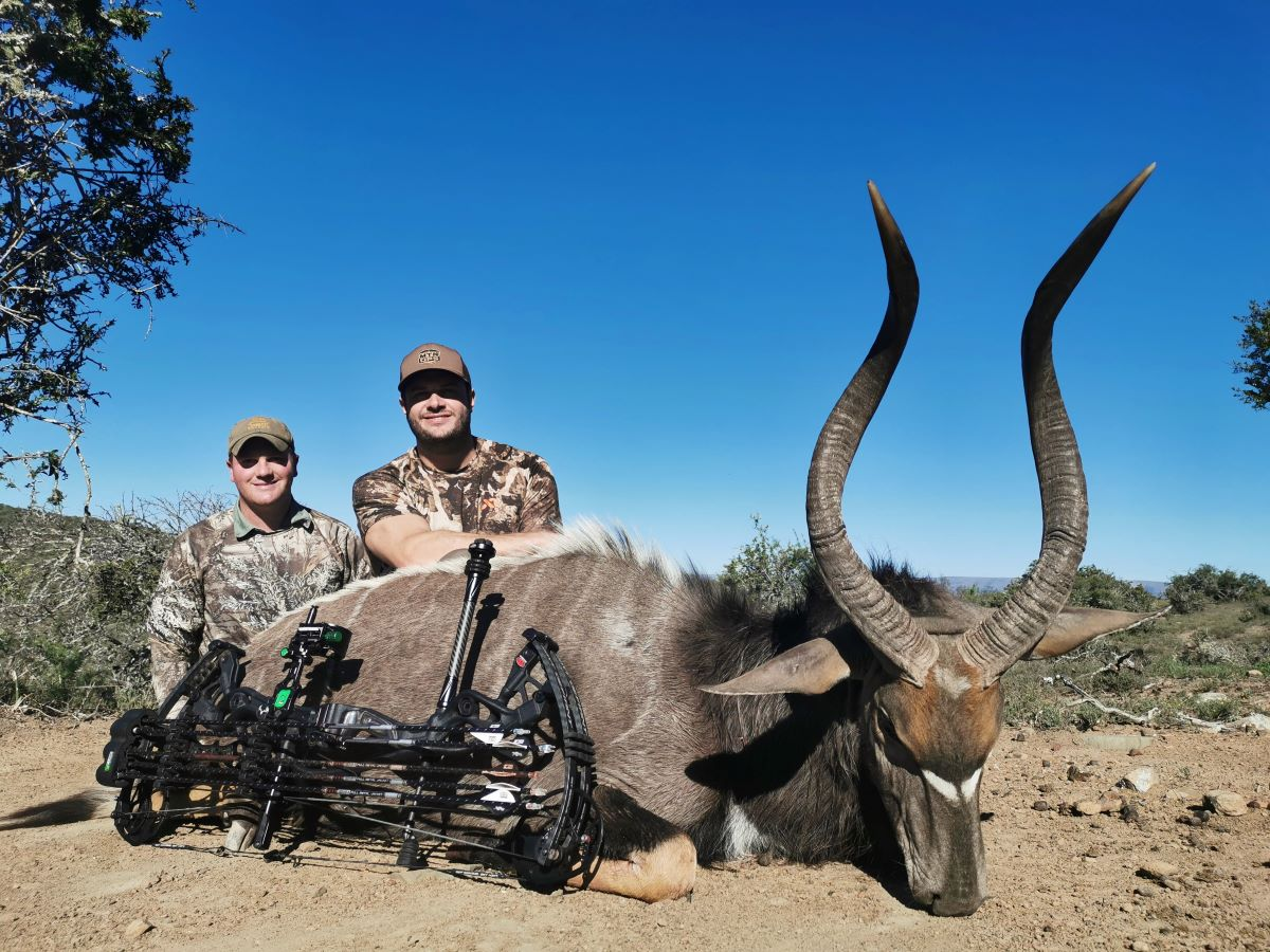 Monster Nyala with Bow by John X Safaris
