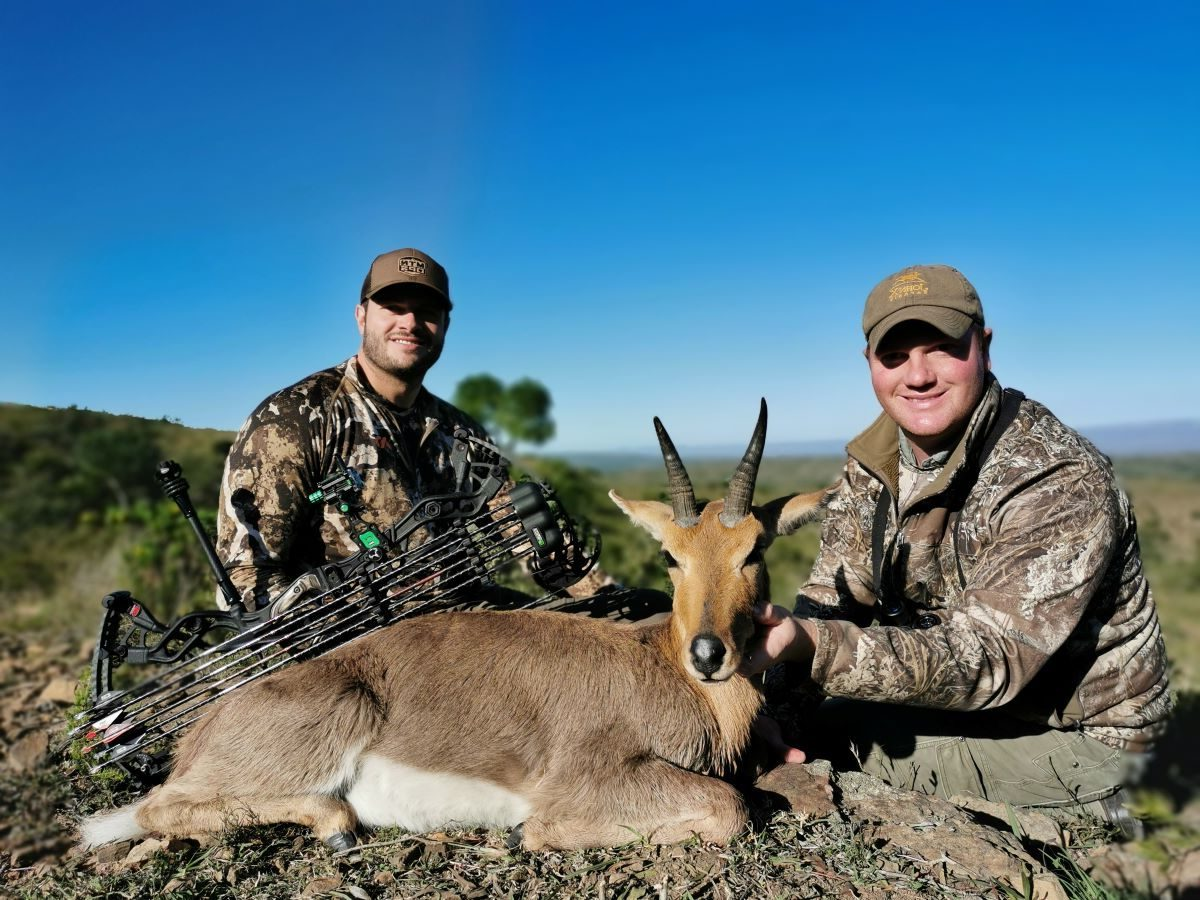 Mountain Reedbuck with Bow